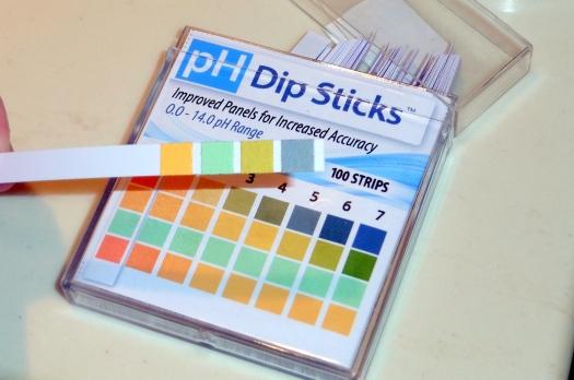 01 pH Test Strip Review