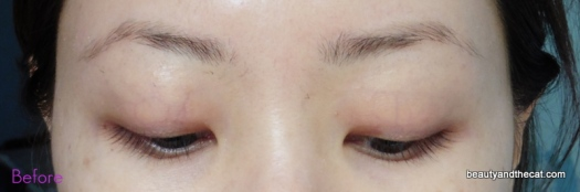 02 Before Brow Tattoo