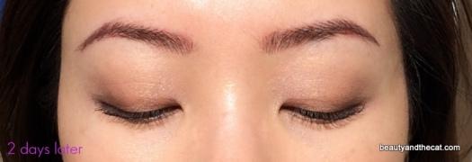 03 Sherri Permanent Makeup Review