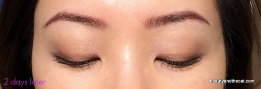 03 Sherri Permanent Makeup Review