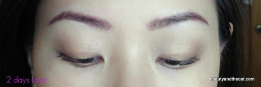 04 Sherri Permanent Makeup Review