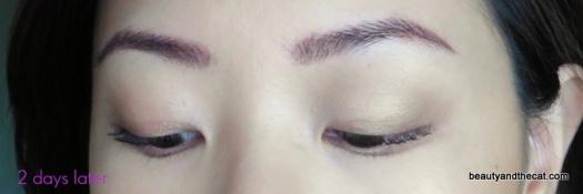 05 Sherri Permanent Makeup Review