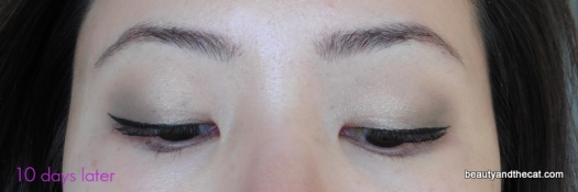 06 Sherri Permanent Makeup Review