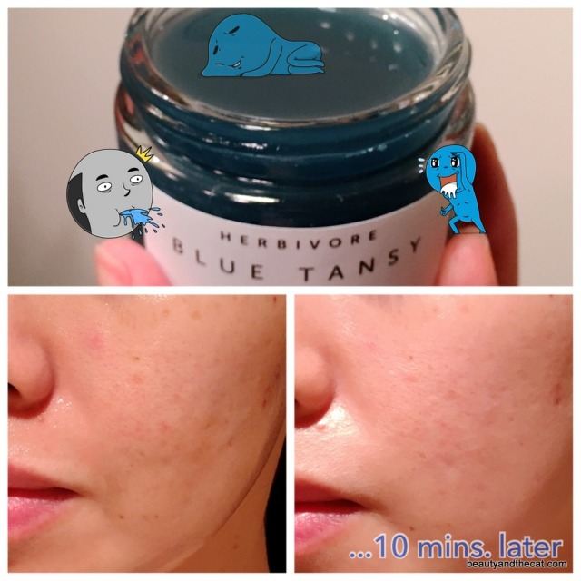 04 Herbivore Blue Tansy Mask Before and After