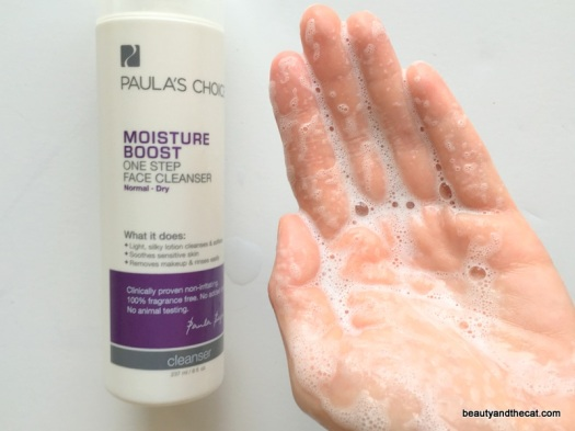 09-paulas-choice-moisture-boost-one-step-cleanser-review